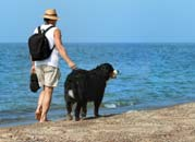 dog and owner on beach