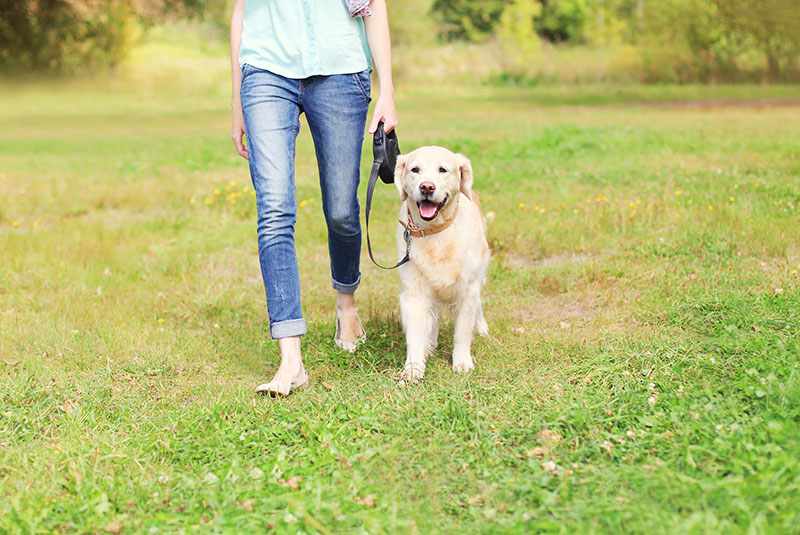 woman barefoot, walking dog on leash in grass