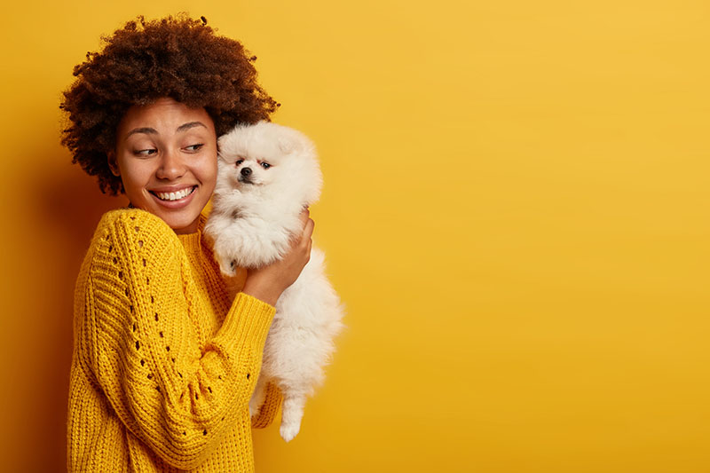 woman holding dog against cheek, yellow background