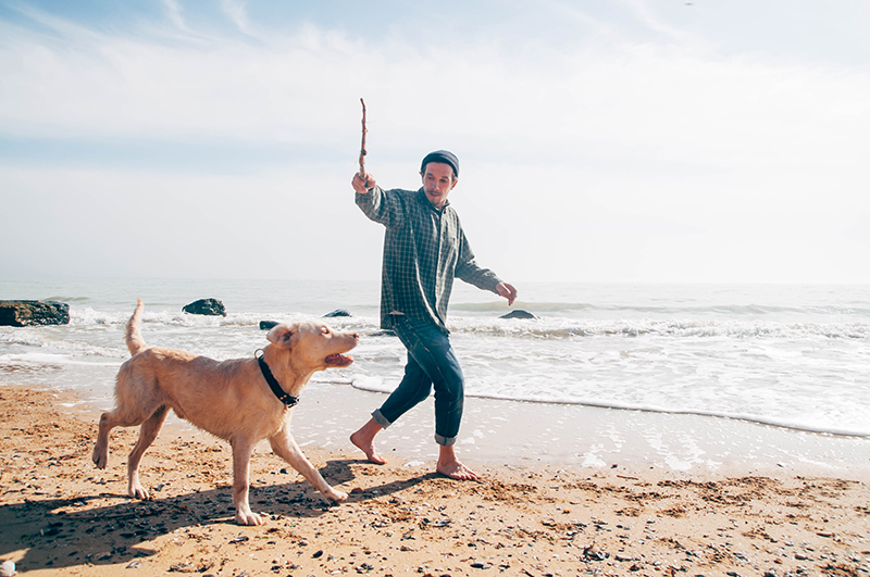 pet dad with dog playing fetch on beach