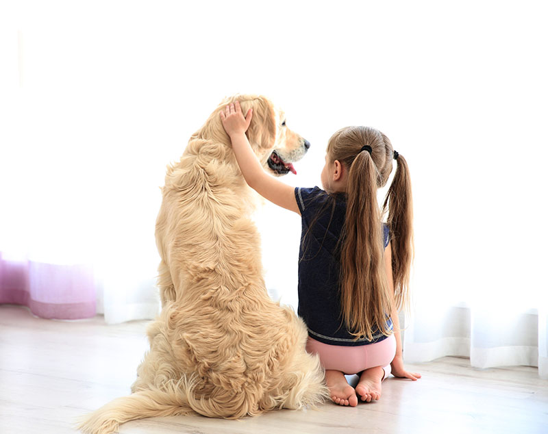 little girl sitting with arm around dog
